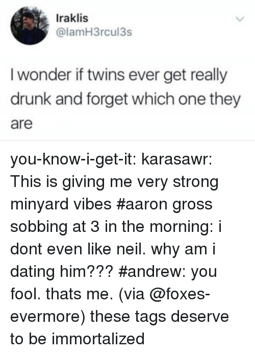 Evermore: Iraklis  @lamH3rcul3s  I wonder if twins ever get really  drunk and forget which one they  are you-know-i-get-it: karasawr: This is giving me very strong minyard vibes   #aaron gross sobbing at 3 in the morning: i dont even like neil. why am i dating him???#andrew: you fool. thats me.(via @foxes-evermore) these tags deserve to be immortalized