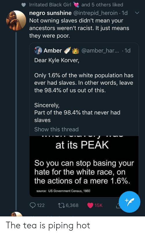 Blackpeopletwitter, Funny, and Heroin: Irritated Black Girl and 5 others liked  negro sunshine @intrepid_heroin 1d  Not owning slaves didn't mean your  ancestors weren't racist. It just means  they were poor.  Amber@amber_har... 1d  Dear Kyle Korver  Only 1.6% of the white population has  ever had slaves. In other words, leave  the 98.4% of us out of this.  Sincerely,  Part of the 98.4% that never had  slaves  Show this thread  at its PEAK  So you can stop basing your  hate for the white race, on  the actions of a mere 1.6%  source: US Government Census, 1860  122 6,368 15K The tea is piping hot