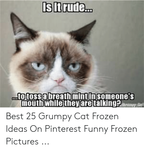 frozen pictures: Is lt rude..  to tossabreathmintinsomeone's  mouthwhile they are talking? Best 25 Grumpy Cat Frozen Ideas On Pinterest Funny Frozen Pictures ...