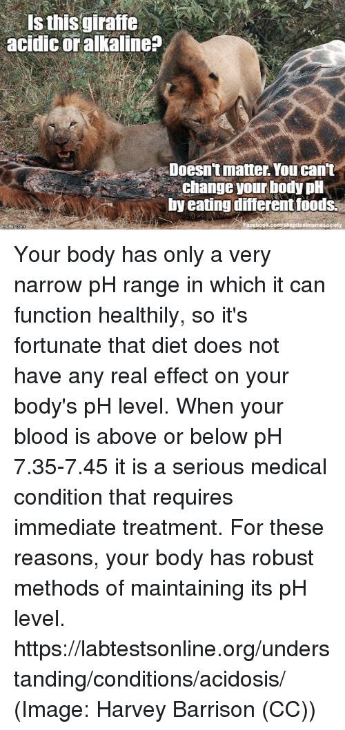 alkaline: Is this giraffe  acidic or alkaline?  Doesn't matter. You can't  change your body pH  by eating differentfoods.  oe book memesaciety Your body has only a very narrow pH range in which it can function healthily, so it's fortunate that diet does not have any real effect on your body's pH level. When your blood is above or below pH 7.35-7.45 it is a serious medical condition that requires immediate treatment. For these reasons, your body has robust methods of maintaining its pH level. https://labtestsonline.org/understanding/conditions/acidosis/ (Image: Harvey Barrison (CC))