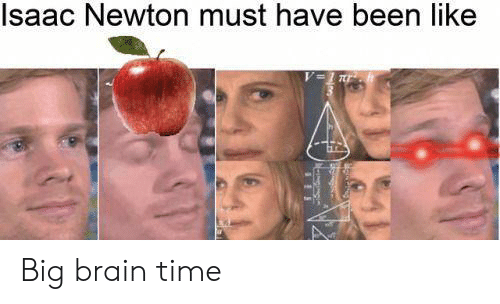 newton: Isaac Newton must have been like Big brain time