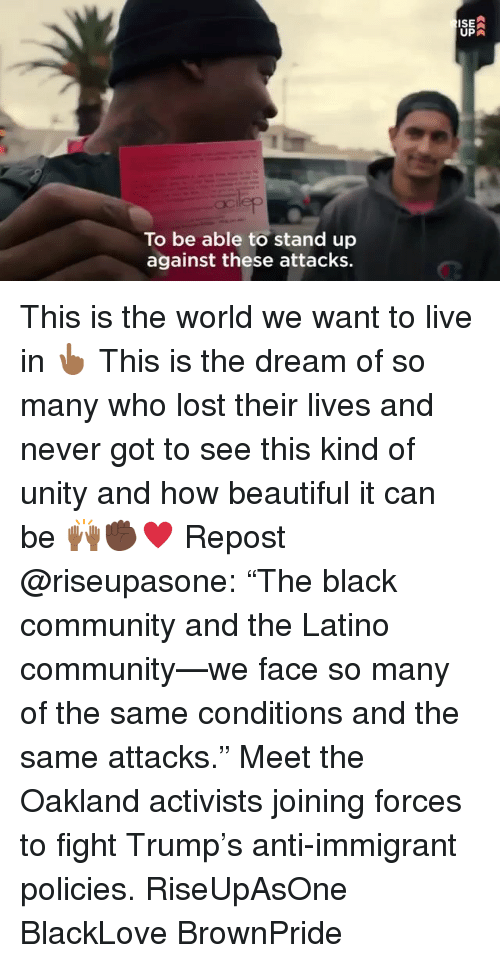 "Beautiful, Community, and Memes: ISE  UPA  To be able to stand up  against these attacks. This is the world we want to live in 👆🏾 This is the dream of so many who lost their lives and never got to see this kind of unity and how beautiful it can be 🙌🏾✊🏿♥️ Repost @riseupasone: ""The black community and the Latino community—we face so many of the same conditions and the same attacks."" Meet the Oakland activists joining forces to fight Trump's anti-immigrant policies. RiseUpAsOne BlackLove BrownPride"