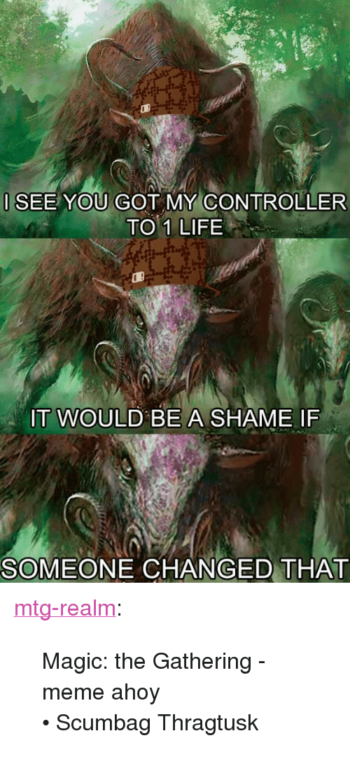 """mtg: ISEE YOU GOT MY CONTROLLER  TO 1 LIFE  IT WOULD BE A SHAME IF  SOMEONE CHANGED THAT <p><a class=""""tumblr_blog"""" href=""""http://mtg-realm.tumblr.com/post/47970814158/magic-the-gathering-meme-ahoy-o-scumbag"""">mtg-realm</a>:</p> <blockquote> <p>Magic: the Gathering - meme ahoy</p> <p>• Scumbag Thragtusk</p> </blockquote>"""