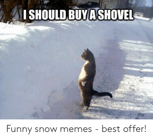 Funny, Memes, and Best: ISHOULD BUYA SHOVEL Funny snow memes - best offer!
