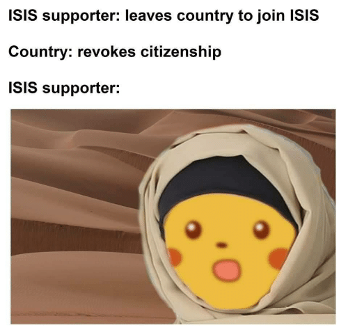 Supporter: ISIS supporter: leaves country to join ISIS  Country: revokes citizenship  ISIS supporter: