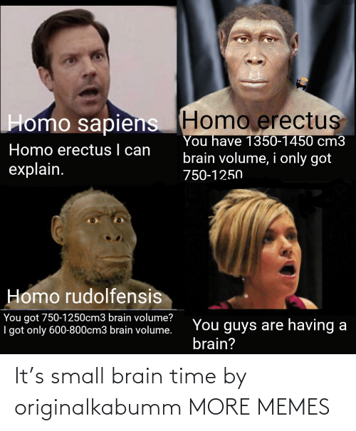 Brain: It's small brain time by originalkabumm MORE MEMES