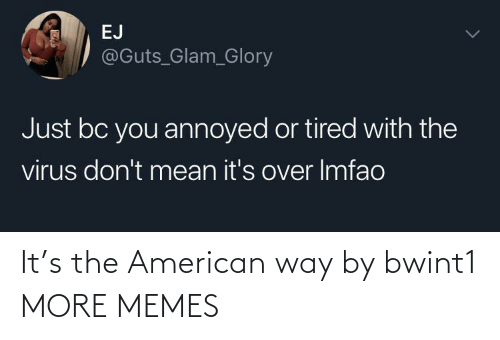 the american way: It's the American way by bwint1 MORE MEMES