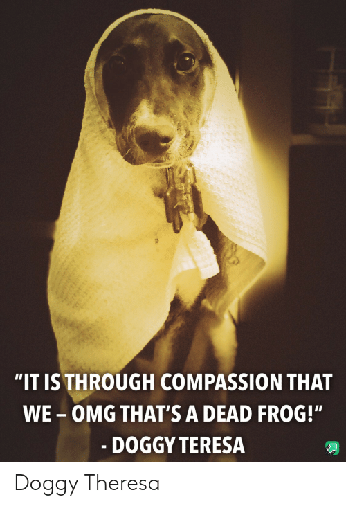 """Omg, Compassion, and Frog: """"IT IS THROUGH COMPASSION THAT  WE-OMG THAT'S A DEAD FROG!""""  - DOGGY TERESA Doggy Theresa"""