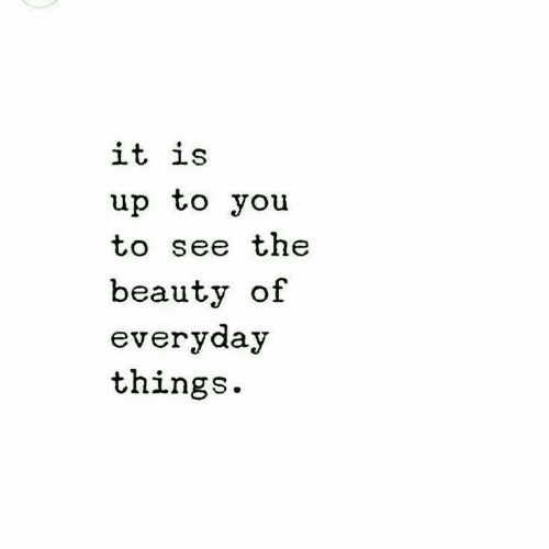 You, Beauty, and  See: it is  up to you  to see the  beauty of  everyday  things.