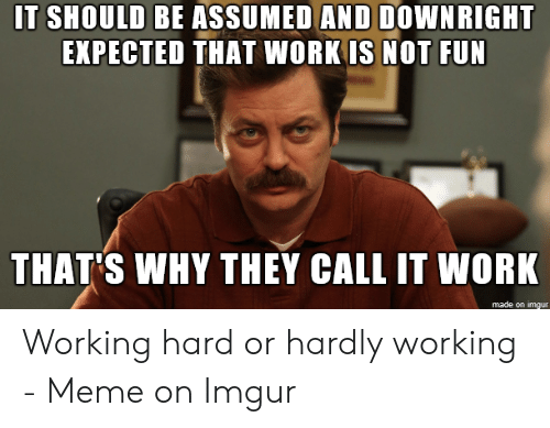 Hard Work Meme: IT SHOULD BE ASSUMED AND DOWNRIGHT  EXPECTED THAT WORK IS NOT FUN  THAT'S WHY THEY CALL IT WORK  made on imgur