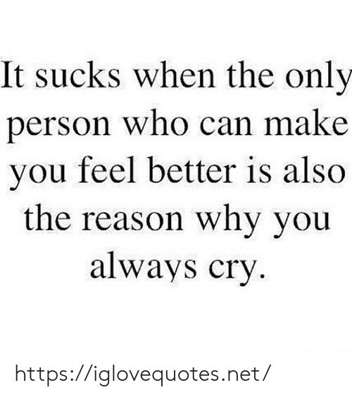 Reason, Net, and Who: It sucks when the only  erson who can make  you feel better is also  the reason why you  always cry https://iglovequotes.net/