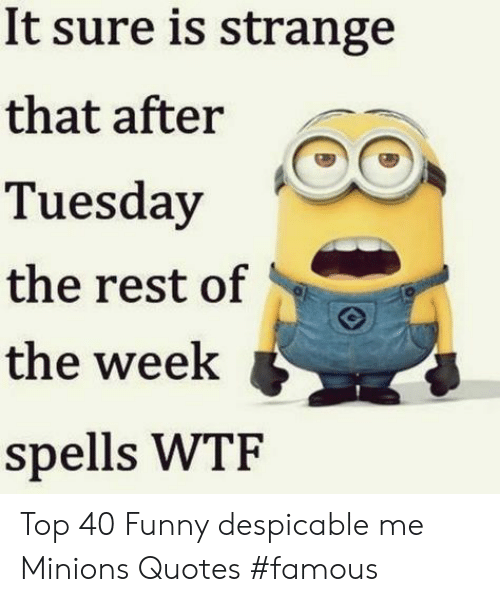 Funny, Wtf, and Despicable Me: It sure is strange  that after  Tuesday  the rest of  the week  spells WTF Top 40 Funny despicable me Minions Quotes #famous