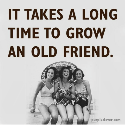 Memes, Purple, and 🤖: IT TAKES A LONG  TIME TO GROW  AN OLD FRIEND.  purple  clover.com