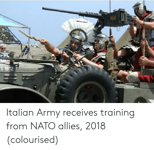 Army, Nato, and Italian: Italian Army receives training from NATO allies, 2018 (colourised)