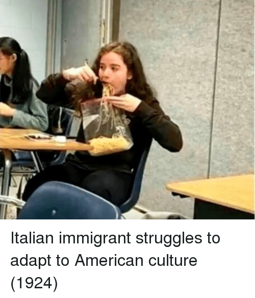 American, Culture, and Italian: Italian immigrant struggles to adapt to American culture (1924)