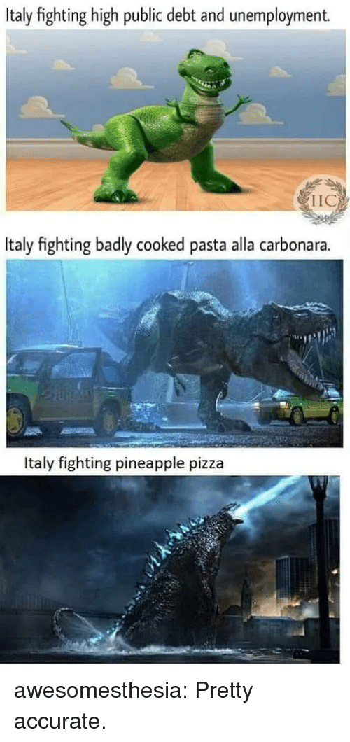 Pizza, Tumblr, and Blog: Italy fighting high public debt and unemployment.  IIC  Italy fighting badly cooked pasta alla carbonara.  Italy fighting pineapple pizza awesomesthesia:  Pretty accurate.