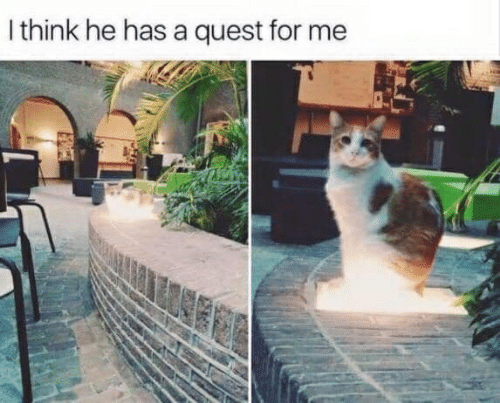 Quest, For, and For Me: Ithink he has a quest for me