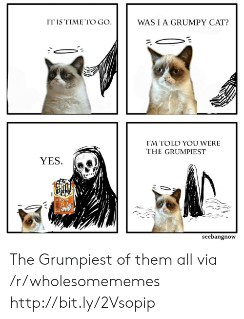 Grumpy Cat, Http, and Time: ITIS TIME TO GO  WASIA GRUMPY CAT?  I'M TOLD YOU WERE  THE GRUMPIEST  YES.  seebangnow The Grumpiest of them all via /r/wholesomememes http://bit.ly/2Vsopip