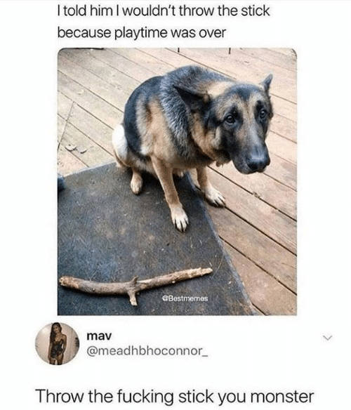 Dank, Fucking, and Monster: Itold him I wouldn't throw the stick  because playtime was over  Bestmemes  mav  @meadhbhoconnor  Throw the fucking stick you monster