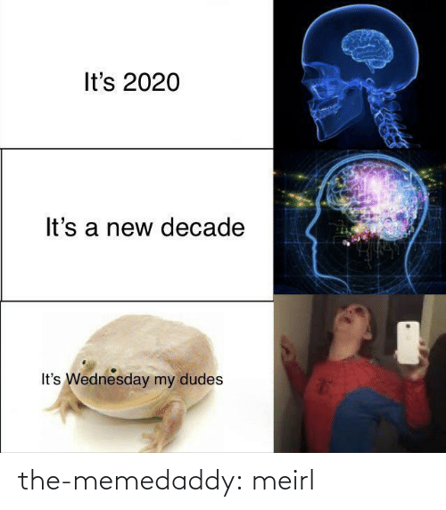 A New: It's 2020  It's a new decade  It's Wednesday my dudes the-memedaddy:  meirl