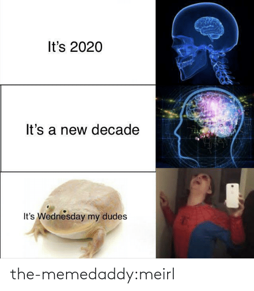 A New: It's 2020  It's a new decade  It's Wednesday my dudes the-memedaddy:meirl