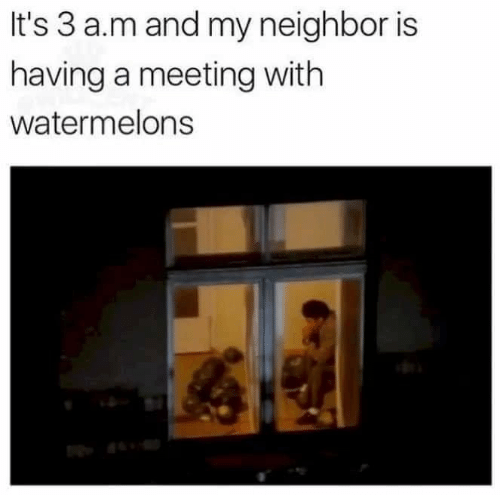 watermelons: It's 3 a.m and my neighbor is  having a meeting with  watermelons