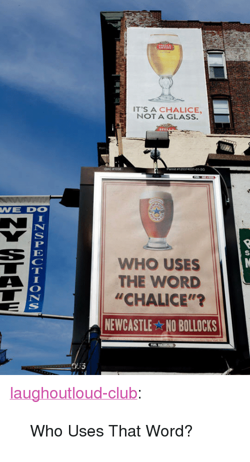 "newcastle: IT'S A CHALICE,  NOT A GLASS.  74031-01-SG  WE DO  WHO USES  THE WORD  ""CHALICE""'?  NEWCASTLE NO BOLLOCKS <p><a href=""http://laughoutloud-club.tumblr.com/post/172140898102/who-uses-that-word"" class=""tumblr_blog"">laughoutloud-club</a>:</p>  <blockquote><p>Who Uses That Word?</p></blockquote>"