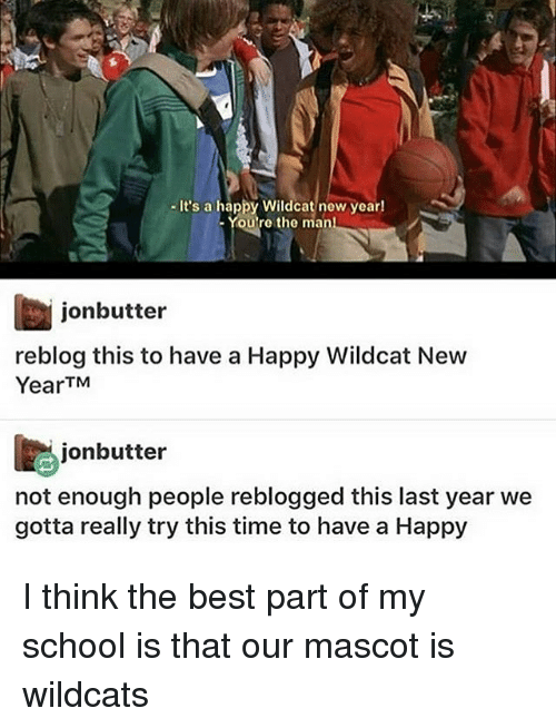 Memes, 🤖, and Wildcat: It's a happy Wildcat new year!  You're the man  jon butter  reblog this to have a Happy Wildcat New  Year TM  jonbutter  not enough people reblogged this last year we  gotta really try this time to have a Happy I think the best part of my school is that our mascot is wildcats