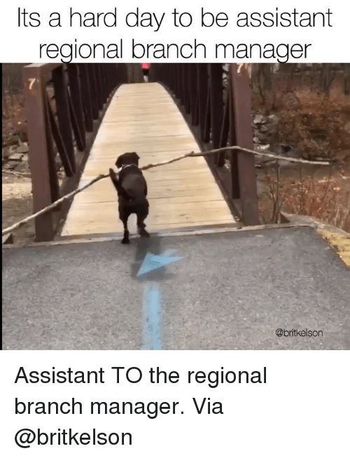Memes, 🤖, and Via: its a hard day to be assistant  regional branch manager  @britkelson Assistant TO the regional branch manager. Via @britkelson