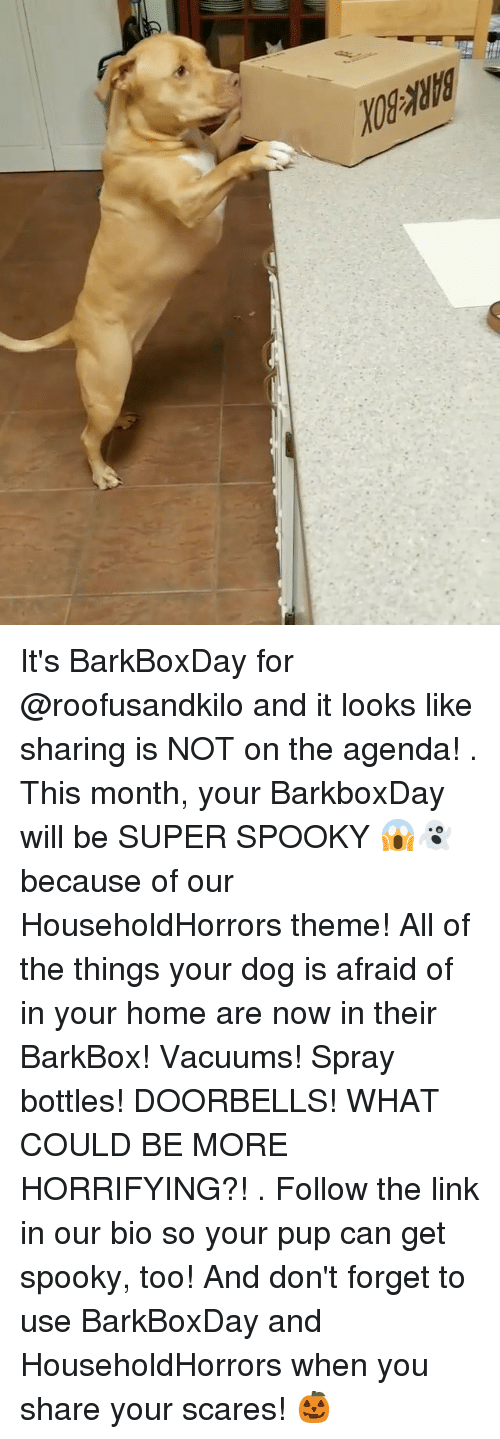 vacuums: It's BarkBoxDay for @roofusandkilo and it looks like sharing is NOT on the agenda! . This month, your BarkboxDay will be SUPER SPOOKY 😱👻 because of our HouseholdHorrors theme! All of the things your dog is afraid of in your home are now in their BarkBox! Vacuums! Spray bottles! DOORBELLS! WHAT COULD BE MORE HORRIFYING?! . Follow the link in our bio so your pup can get spooky, too! And don't forget to use BarkBoxDay and HouseholdHorrors when you share your scares! 🎃