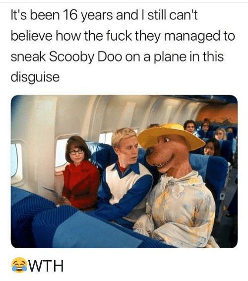 Memes, Scooby Doo, and Fuck: It's been 16 years and I still can't  believe how the fuck they managed to  sneak Scooby Doo on a plane in this  disguise 😂WTH