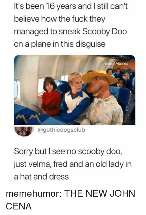 John Cena: It's been 16 years and I still can't  believe how the fuck they  managed to sneak Scooby Doo  on a plane in this disguise  @BestMemes  @gothicdogsclub  Sorry but l see no scooby doo,  just velma, fred and an old lady in  a hat and dress memehumor:  THE NEW JOHN CENA