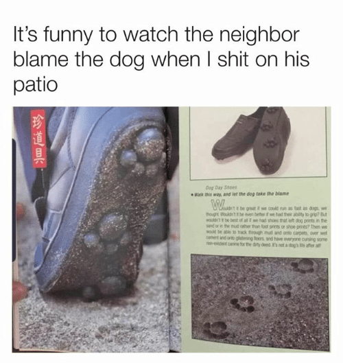 Its Funny: It's funny to watch the neighbor  blame the dog when I shit on his  patio  Dog Day Shoes  Wak way, and let the dog take the blame  be great we could run as tast as dogs  tog Wouldt it be even beter if we had their ability to grip? Bt  MOuld be best of al t we had shoes that h dog prints in the  sand or in the mud ather than fot prints or shoe prints? Then we  MOuid te able to rack through mud and onto carpets, over wet  anto gidening foons and have everyone cursing some  ron-eentcine for the dity deed t's not a dog's Me after all  cennt  金道具,