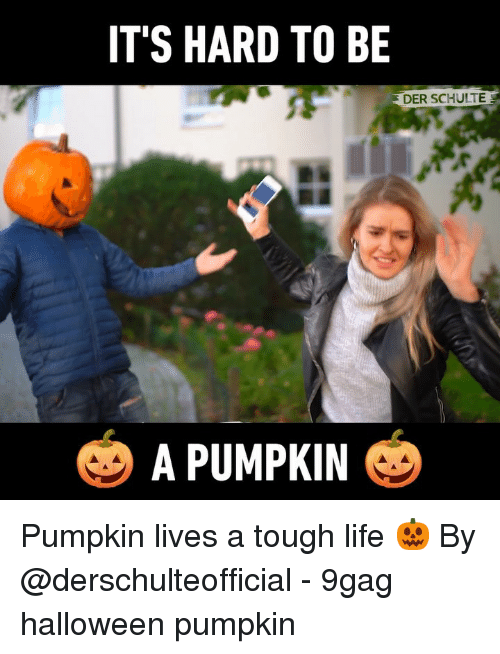 9gag, Halloween, and Life: IT'S HARD TO BE  DER SCHULTE  A PUMPKIN Pumpkin lives a tough life 🎃 By @derschulteofficial - 9gag halloween pumpkin