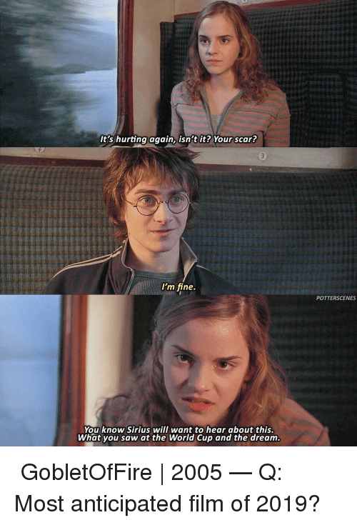 World Cup: It's hurting again, isn't it? Your scar?  I'm fine.  POTTERSCENES  You know Sirius will want to hear about this.  What you saw at the World Cup and the dream ➙ GobletOfFire | 2005 — Q: Most anticipated film of 2019?