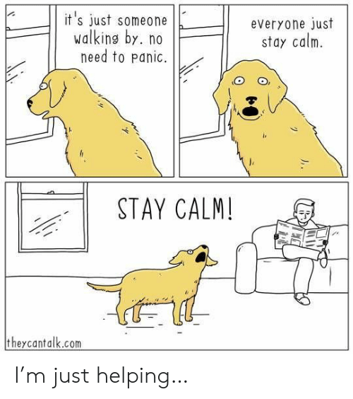 panic: it's just someone  walking by. no  need to panic.  everyone just  stay calm  STAY CALM!  theycantalk.com I'm just helping…