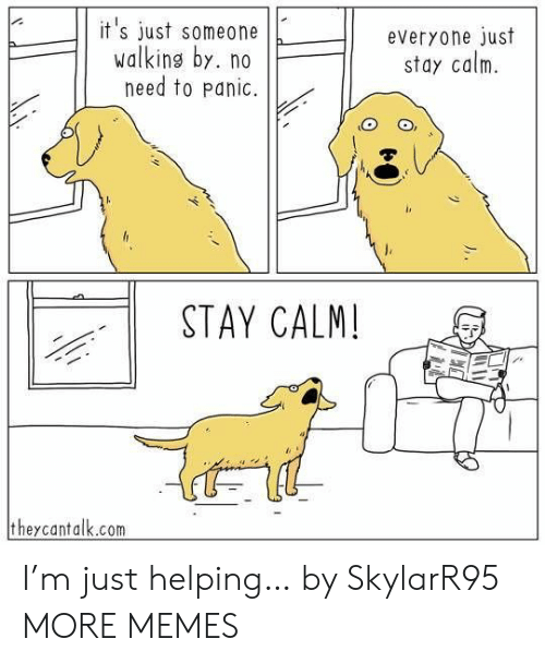 panic: it's just someone  walking by. no  need to panic.  everyone just  stay calm  STAY CALM!  theycantalk.com I'm just helping… by SkylarR95 MORE MEMES
