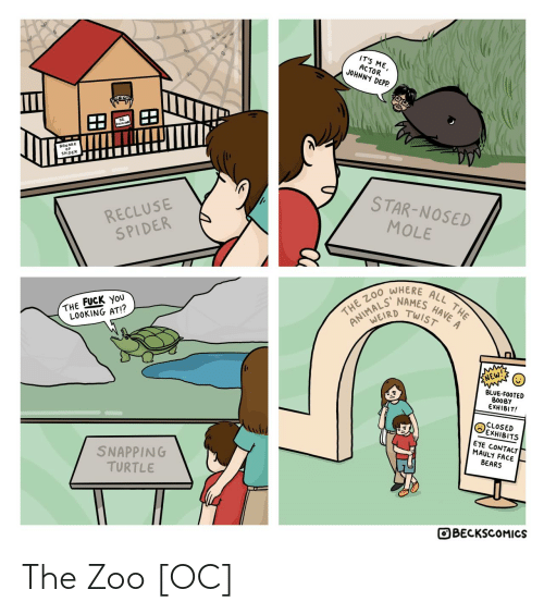 zoo: IT'S ME,  ACTOR  JOHNNY DEPP.  BEWARE  SPIDER  STAR-NOSED  RECLUSE  SPIDER  MOLE  WHERE  HAVE A  NAMES  TWIST  ALL THE  THE ZO0  ANIMALD  THE FUCK YoU  LOOKING AT!?  ENEW!  BLUE-FOOTED  BOOBY  EXHIBIT!  CLOSED  EXHIBITS  EYE CONTACT  MAULY FACE  BEARS  SNAPPING  TURTLE  OBECKSCOMICS The Zoo [OC]