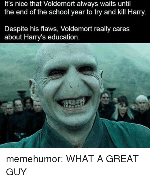 School, Tumblr, and Blog: It's nice that Voldemort always waits until  the end of the school year to try and kill Harry.  Despite his flaws, Voldemort really cares  about Harry's education memehumor:  WHAT A GREAT GUY