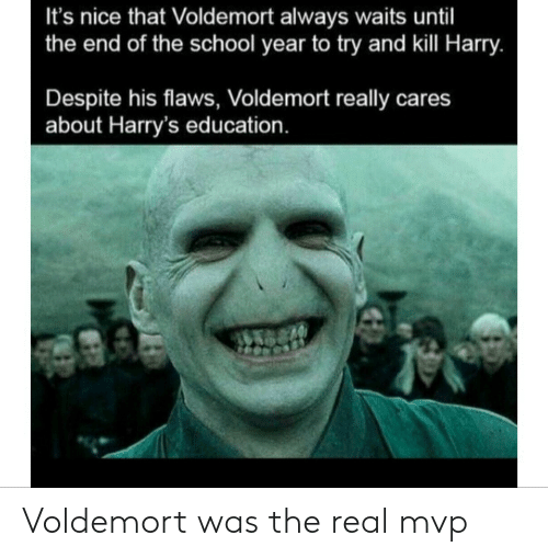 voldemort: It's nice that Voldemort always waits until  the end of the school year to try and kill Harry.  Despite his flaws, Voldemort really cares  about Harry's education. Voldemort was the real mvp