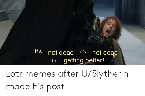 Lotr Memes: It's not dead! it's not dead!  getting better!  it's Lotr memes after U/Slytherin made his post