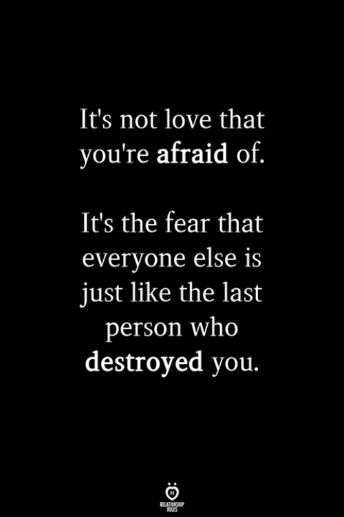 The Fear: It's not love that  you're afraid of  It's the fear that  everyone else is  just like the last  person who  destroyed you.
