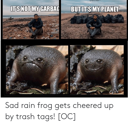 frog: IT'S NOT MY GARBAG  BUT IT'S MY PLANET Sad rain frog gets cheered up by trash tags! [OC]