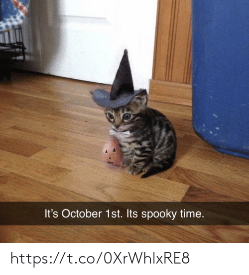 October 1St: It's October 1st. Its spooky time. https://t.co/0XrWhlxRE8