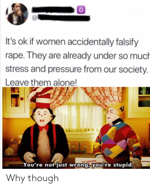 Our Society: It's ok if women accidentally falsify  rape. They are already under so much  stress and pressure from our society.  Leave them alone!  VIL  THE AMAZING  You're not just wrong, you're stupid. Why though