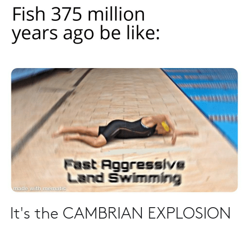 explosion: It's the CAMBRIAN EXPLOSION