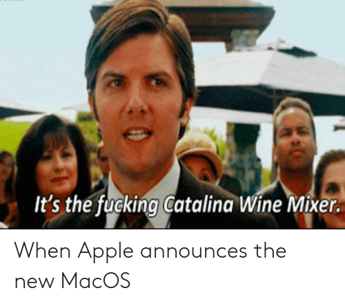 catalina wine mixer: It's the fucking Catalina Wine Mixer. When Apple announces the new MacOS