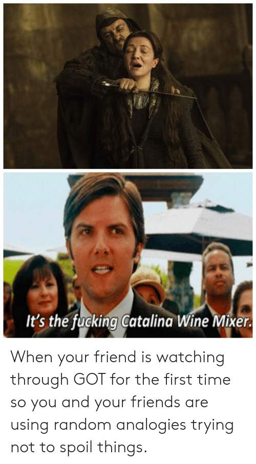 catalina wine mixer: It's the fucking Catalina Wine Mixer. When your friend is watching through GOT for the first time so you and your friends are using random analogies trying not to spoil things.