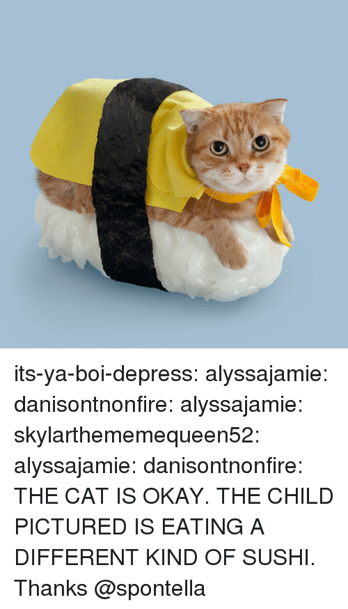 Tumblr, Blog, and Http: its-ya-boi-depress:  alyssajamie:  danisontnonfire:  alyssajamie:  skylarthememequeen52:  alyssajamie:   danisontnonfire:    THE CAT IS OKAY. THE CHILD PICTURED IS EATING A DIFFERENT KIND OF SUSHI.       Thanks @spontella