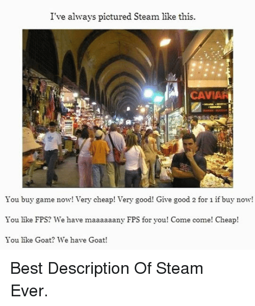Steam, Goat, and Best: I've always pictured Steam like this.  CAVIA  You buy game now! Very cheap! Very good! Give good 2 for 1 if buy now!  You like FPS? We have maaaaaany FPS for you! Come come! Cheap!  You like Goat? We have Goat! <p>Best Description Of Steam Ever.</p>